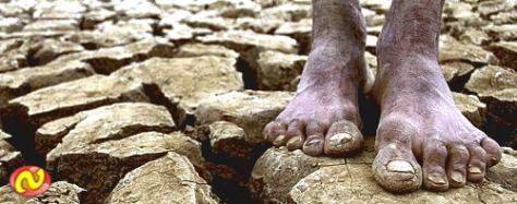 Mais de mil cidades nordestinas estão em estado de emergência por causa da seca